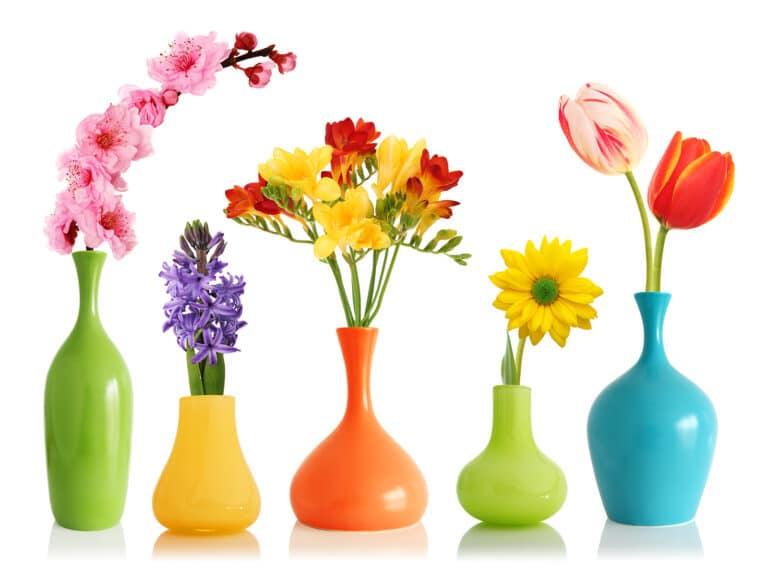 Hospice Care Orangeburg SC - Donations Needed - Flower Vases